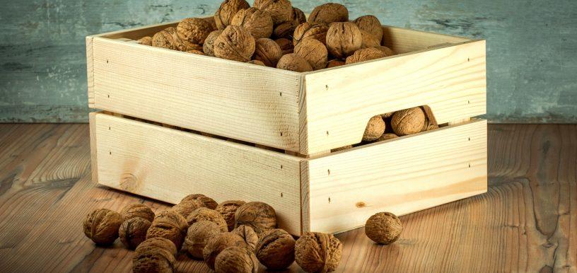 nuts-1213037_1920